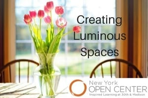 Creating Luminous Spaces: Use the Five Natural Elements to Connect Your Soul and Your Home