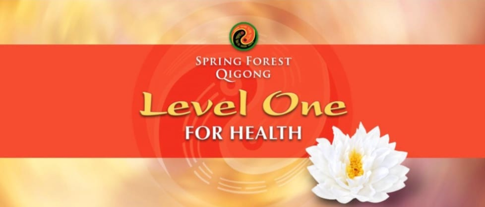 Spring Forest Qigong Level 1 Certified Training Class, Florida