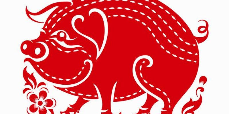 Feng Shui Year of the Earth Pig Visions with S. Lee Wright